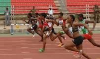 athlétisme 02.jpeg